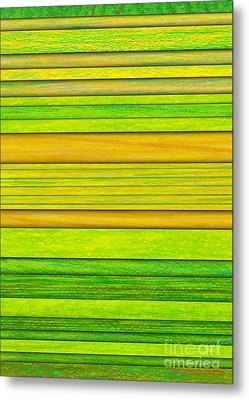 Lemon Limeade Metal Print by David K Small