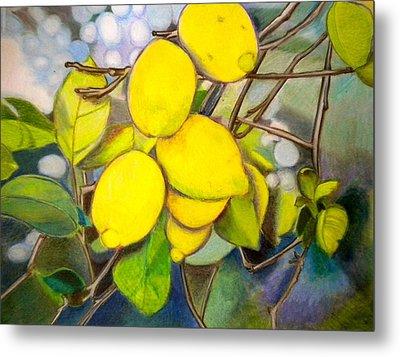 Lemons Metal Print by Debi Starr