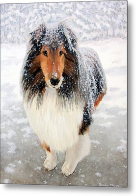 Leo In The Snow Metal Print by Sandra Chase
