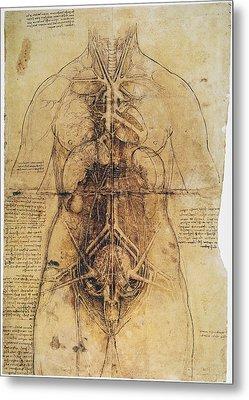 Leonardo: Anatomy, C1510 Metal Print by Granger