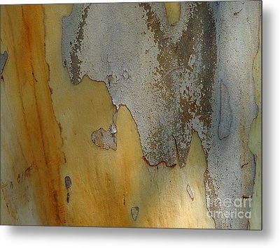 Leopard Tree Bark Abstract No.3 Metal Print by Denise Clark