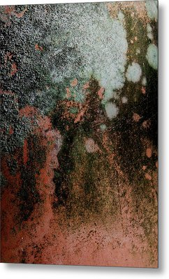 Lichen Abstract 2 Metal Print by Denise Clark