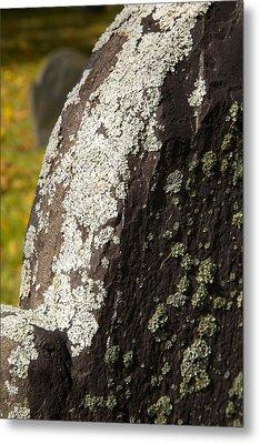 Lichen On Headstone Metal Print by Allan Morrison