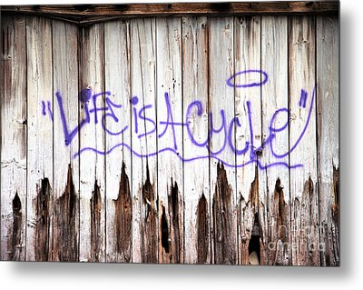 Life Is A Cycle Metal Print by Amanda Barcon