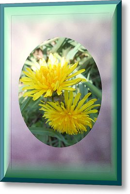 Life Is Made Up Of Dandelions Metal Print by Patricia Keller