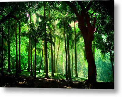 Light In The Jungles. Viridian Greens. Mauritius Metal Print by Jenny Rainbow