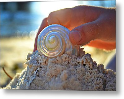 Light Of Creation Metal Print by Laura Fasulo