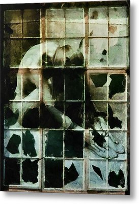 Like A Broken Window Metal Print by Gun Legler