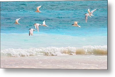 Like Birds In The Air Metal Print by Jenny Rainbow