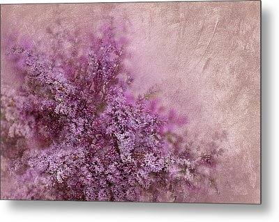 Lilac Splash Metal Print by Svetlana Sewell