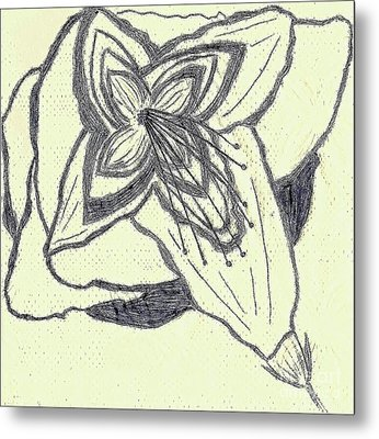 Lilly Artistic Doodling Drawing Metal Print by Joseph Baril