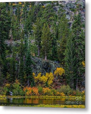 Lily Lake Autumn Metal Print by Mitch Shindelbower