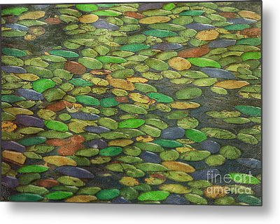 Lily Pads Metal Print by Tom York Images