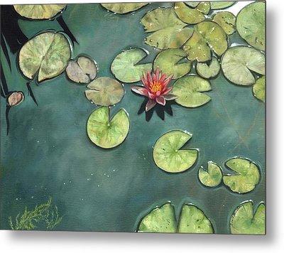 Lily Pond Metal Print by David Stribbling
