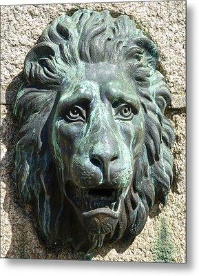 Lion King Metal Print by Charlie Brock