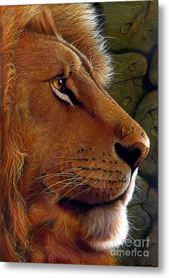 Lion King Metal Print by Jurek Zamoyski