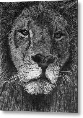 Lion Of Judah Metal Print by Bobby Shaw