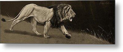 Lion Sketch Metal Print by Aaron Blaise