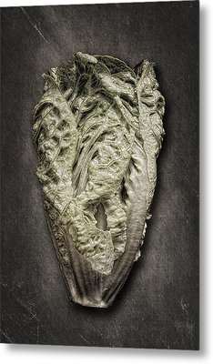 Little Gem Lettuce Metal Print by Tom Mc Nemar