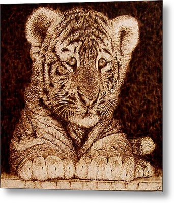 Little Tiger Metal Print by Cara Jordan