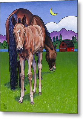 Littlebit Of Whidbey Metal Print by Stacey Neumiller