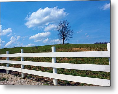 Lone Tree Metal Print by Lorna Rogers Photography