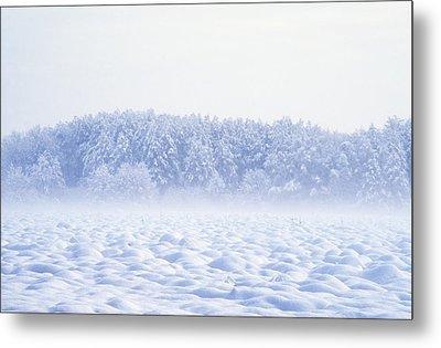 Loneliness In Winter Metal Print by Patrick Kessler