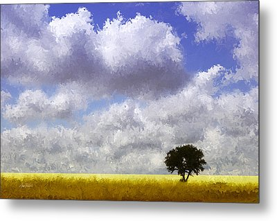 Lonely On The Prairie Metal Print by Ann Powell