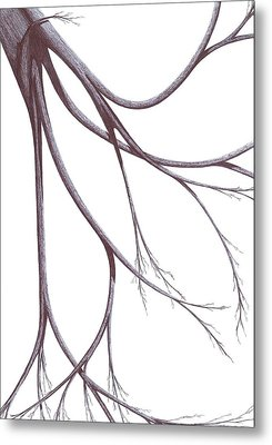 Long Branches Metal Print by Giuseppe Epifani
