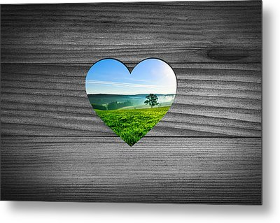 Look Into Nature Metal Print by Aged Pixel