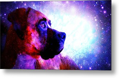 Look To The Stars Metal Print by Kaylee Vergilio