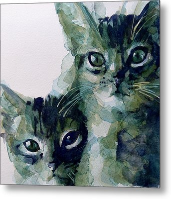 Looking For A Home Metal Print by Paul Lovering