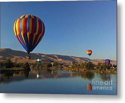 Looking For A Place To Land Metal Print by Mike  Dawson