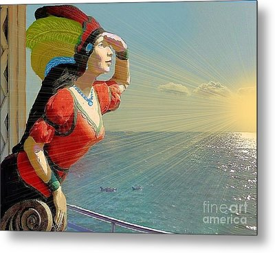 Looking For Land Metal Print by Janette Boyd