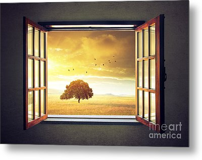 Looking Out The Window Metal Print by Carlos Caetano