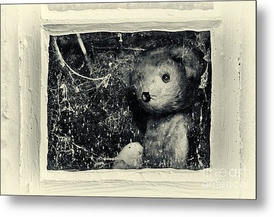 Looking Out Metal Print by Tim Gainey