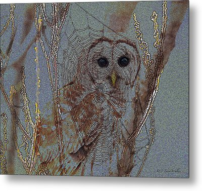 Looking Through The Web Metal Print by J Larry Walker