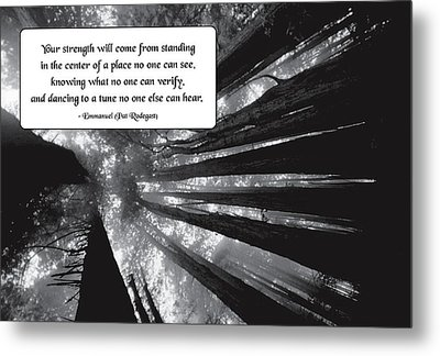 Looking Within Metal Print by Mike Flynn