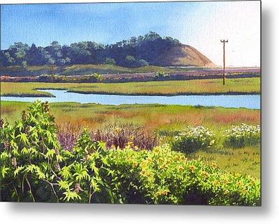 Los Penasquitos Creek Torrey Pines Metal Print by Mary Helmreich