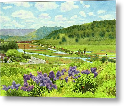 Los Penasquitos Looking East Metal Print by Mary Helmreich