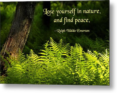 Lose Yourself In Nature Metal Print by Mike Flynn