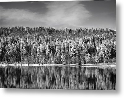 Lost In Reflection Metal Print by Laurie Search