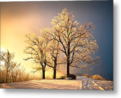 Luminous - Blue Ridge Winter Sunset Metal Print by Dave Allen