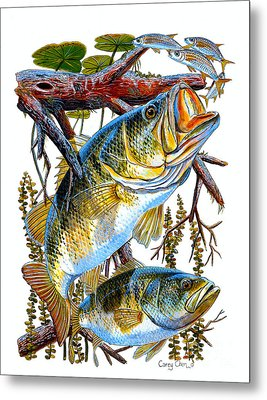 Lurking Bass Metal Print by Carey Chen