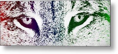Lynx Eyes Metal Print by Aged Pixel