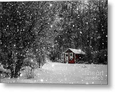 Made In Maine Winter  Metal Print by Brenda Giasson