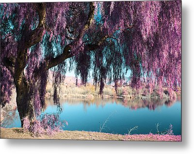 Magic Can Happen Metal Print by Laurie Search