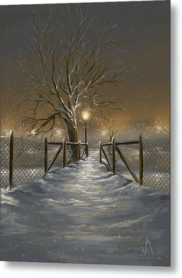Magic Night Metal Print by Veronica Minozzi