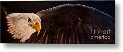 Majesty Metal Print by Julie Bond