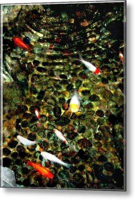 Make A Wish Koi Fishes Metal Print by Danielle  Parent